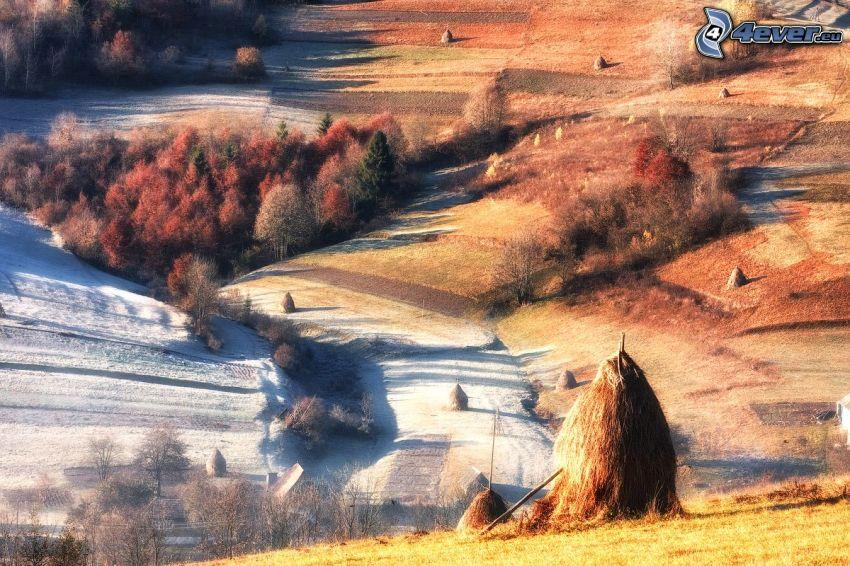 pola, jesienne drzewa, zlisowana słoma, śnieg