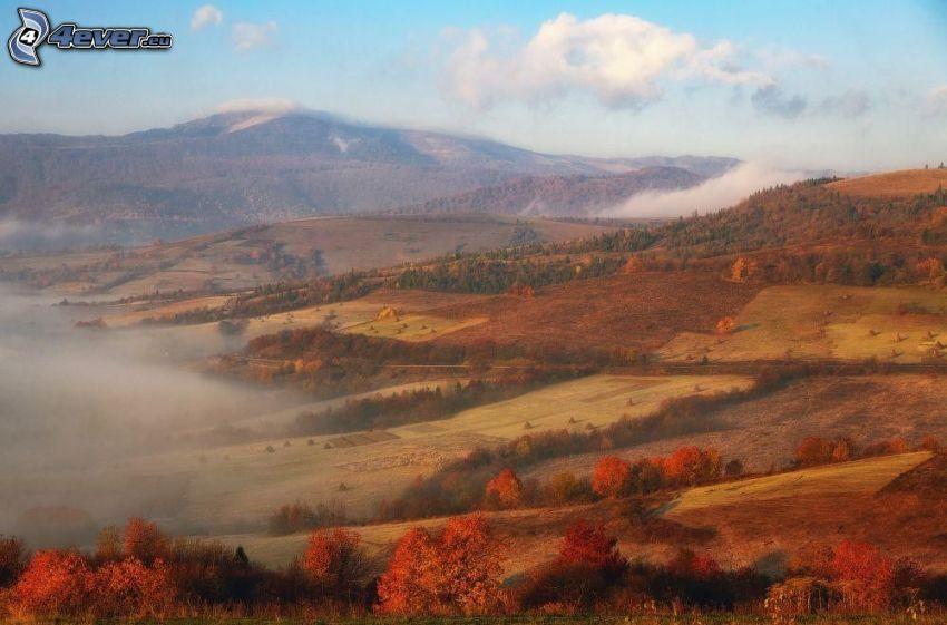 pola, wzgórza, kolorowe jesienne drzewa