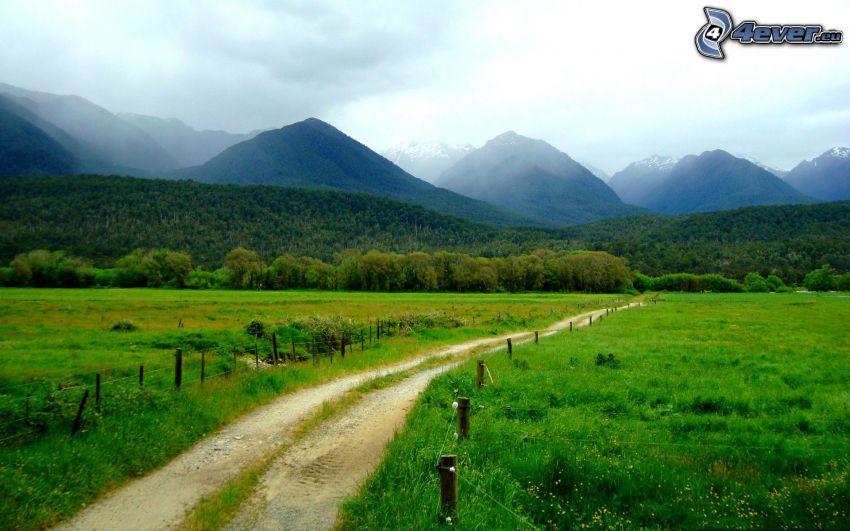 polna droga, łąka, wzgórza