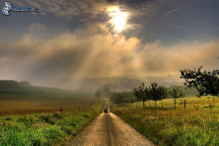 polna droga, łąki, drzewa, chmury, słońce