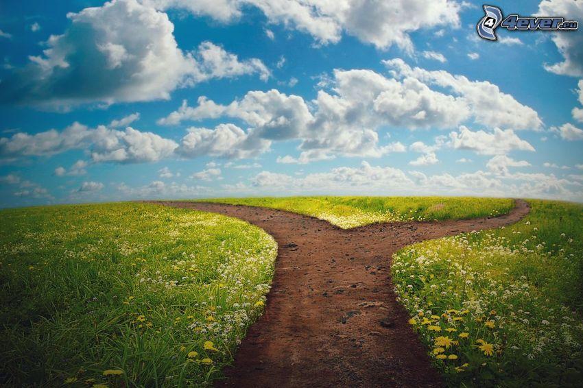 polna droga, rozdroże, łąka, chmury