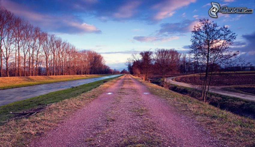 polna droga, rzeka, drzewa
