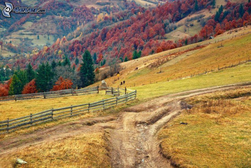 polna droga, wzgórza, ogrodzenie, kolorowe drzewa