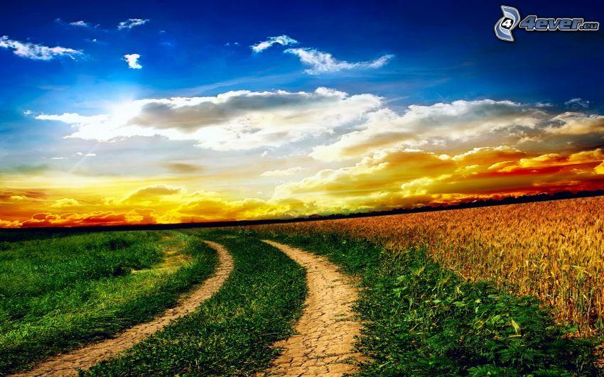 polna droga, zachód słońca nad polem, chmury