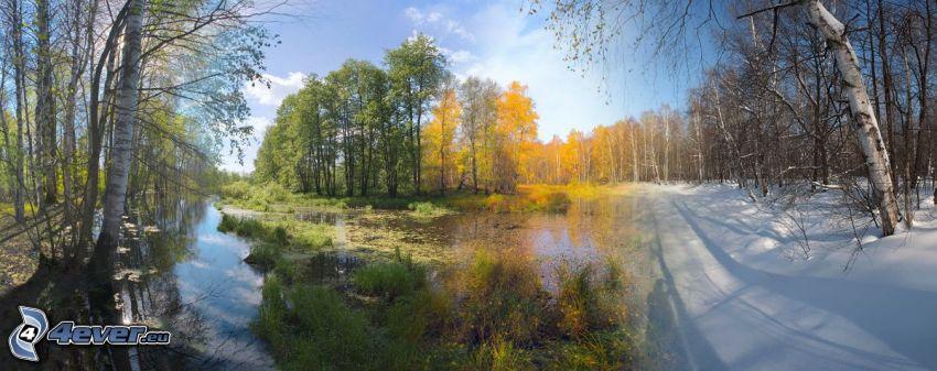 pory roku, wiosna, lato, jesień, zima, strumyk, żółte drzewa, śnieg
