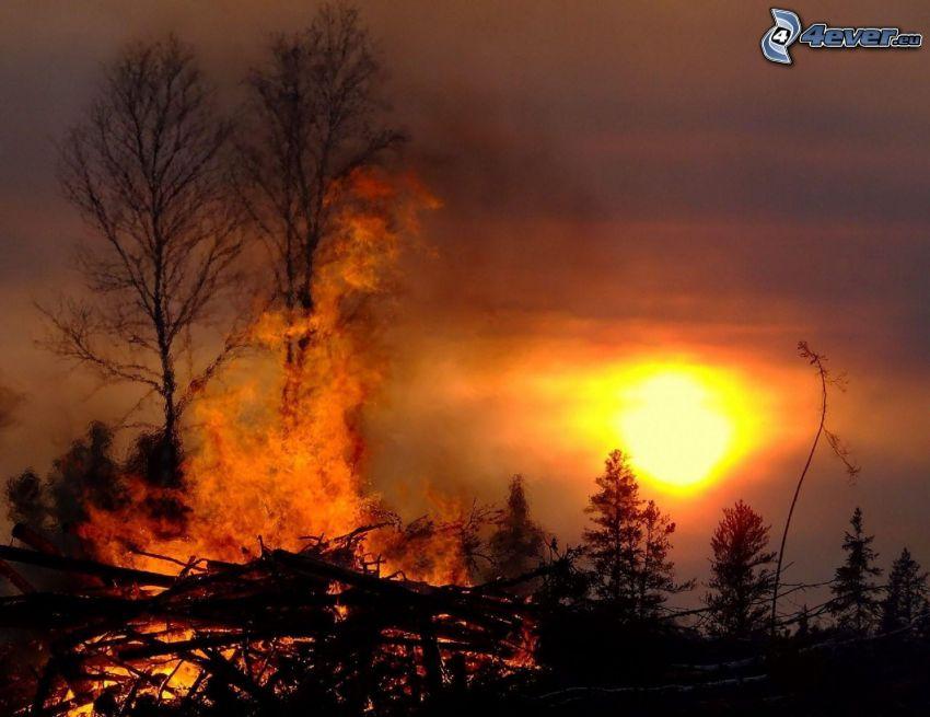 pożar, zachód słońca