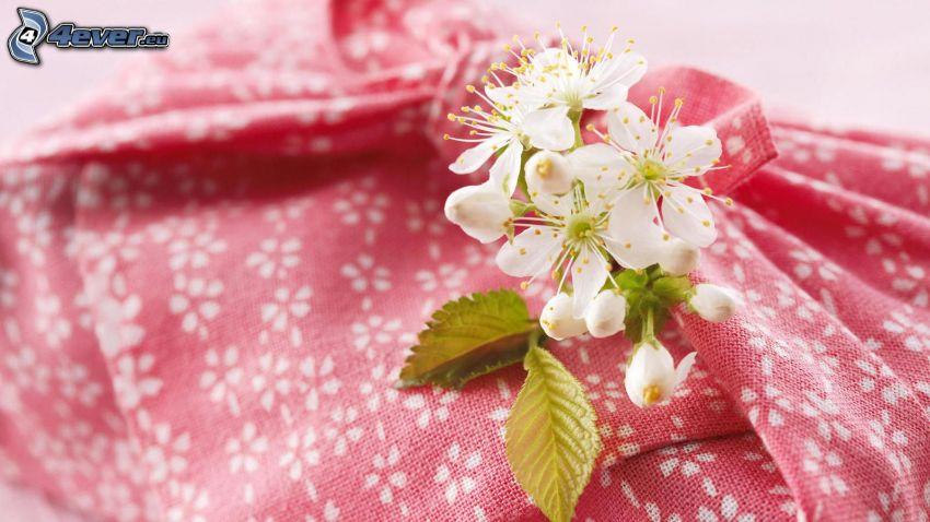 białe kwiaty, zielone liście, materiał