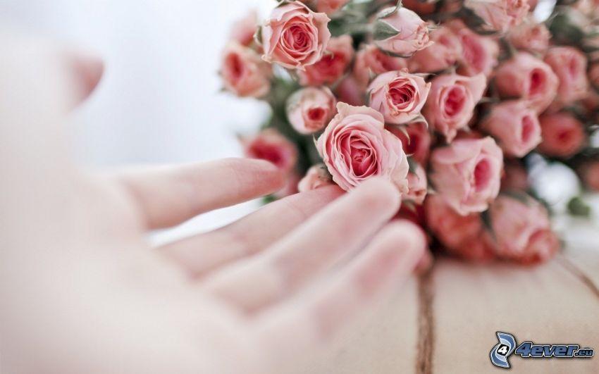 bukiet ślubny, różowe róże, ręka