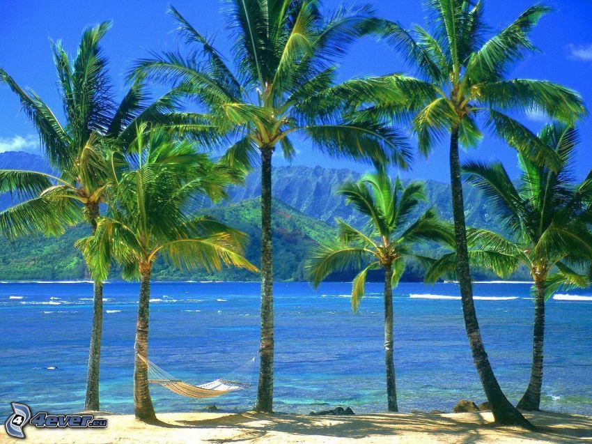 palmy na plaży, hamak, morze, pasmo górskie
