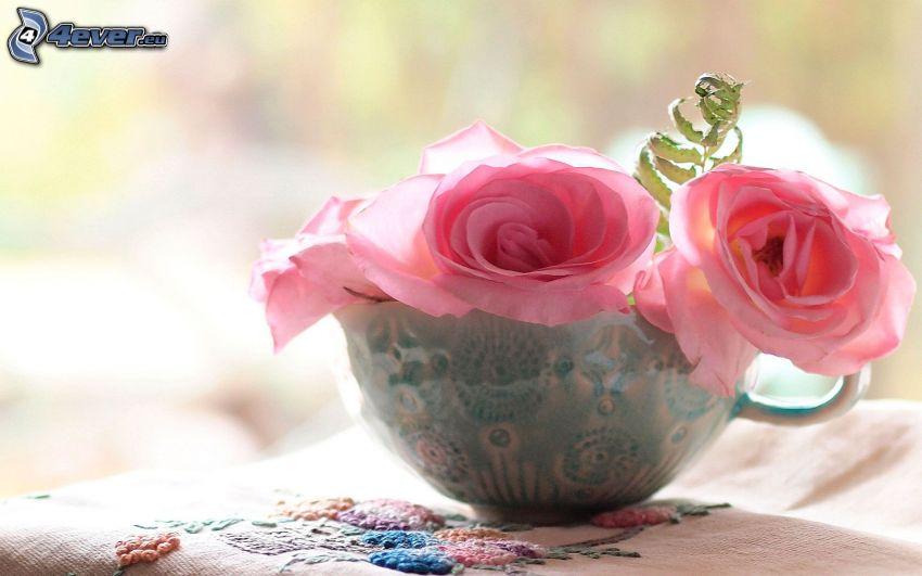 różowe róże, filiżanka