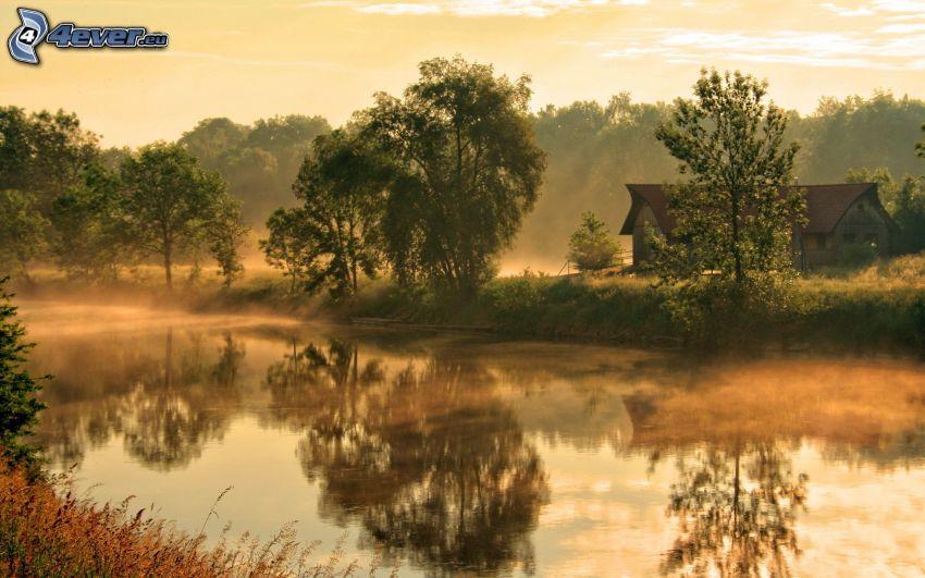 rzeka, drzewa, odbicie, chatka, przyziemna mgła