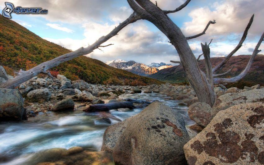 rzeka, samotne drzewo, pasmo górskie