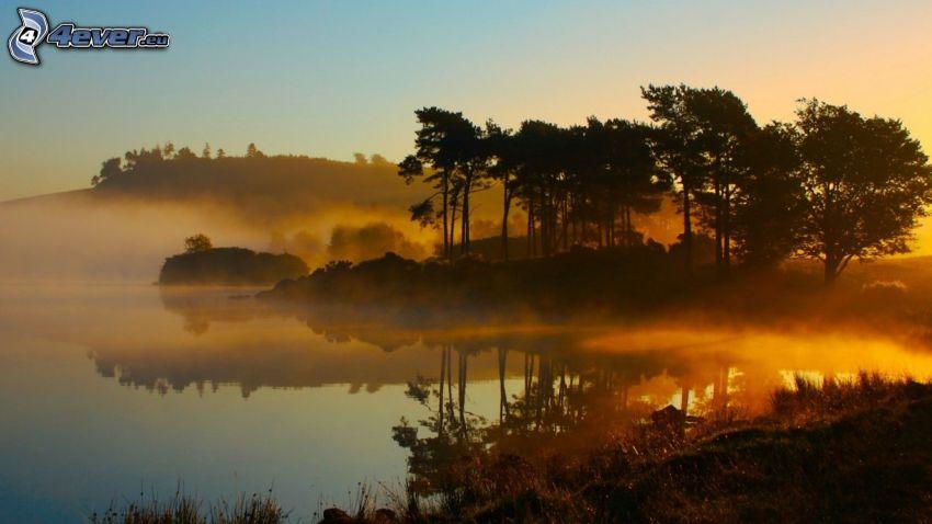 sawanna, jezioro, przyziemna mgła, drzewa