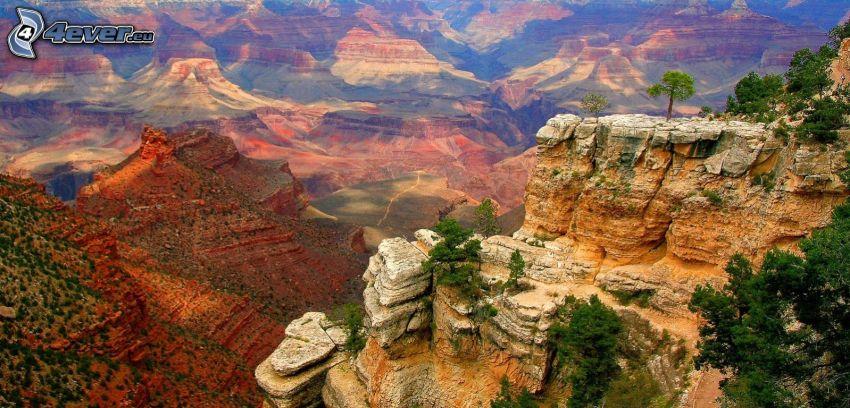 Sedona - Arizona, skały, drzewa