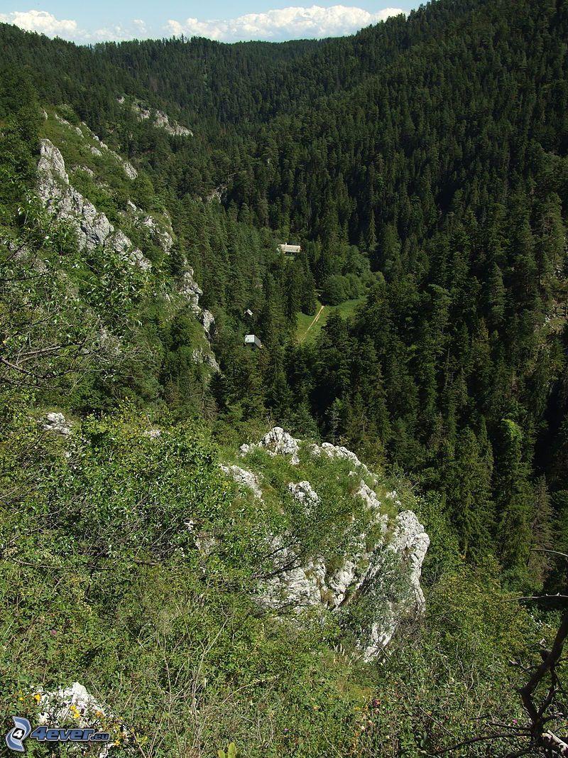 Słowacki Raj, dolina