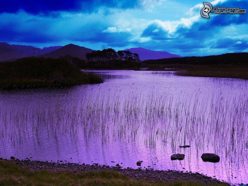 spokojne jezioro wieczorem