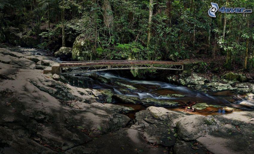strumyk w lesie, most, skały