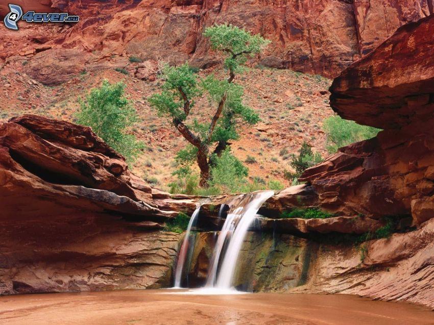 wodospad, skały, drzewo