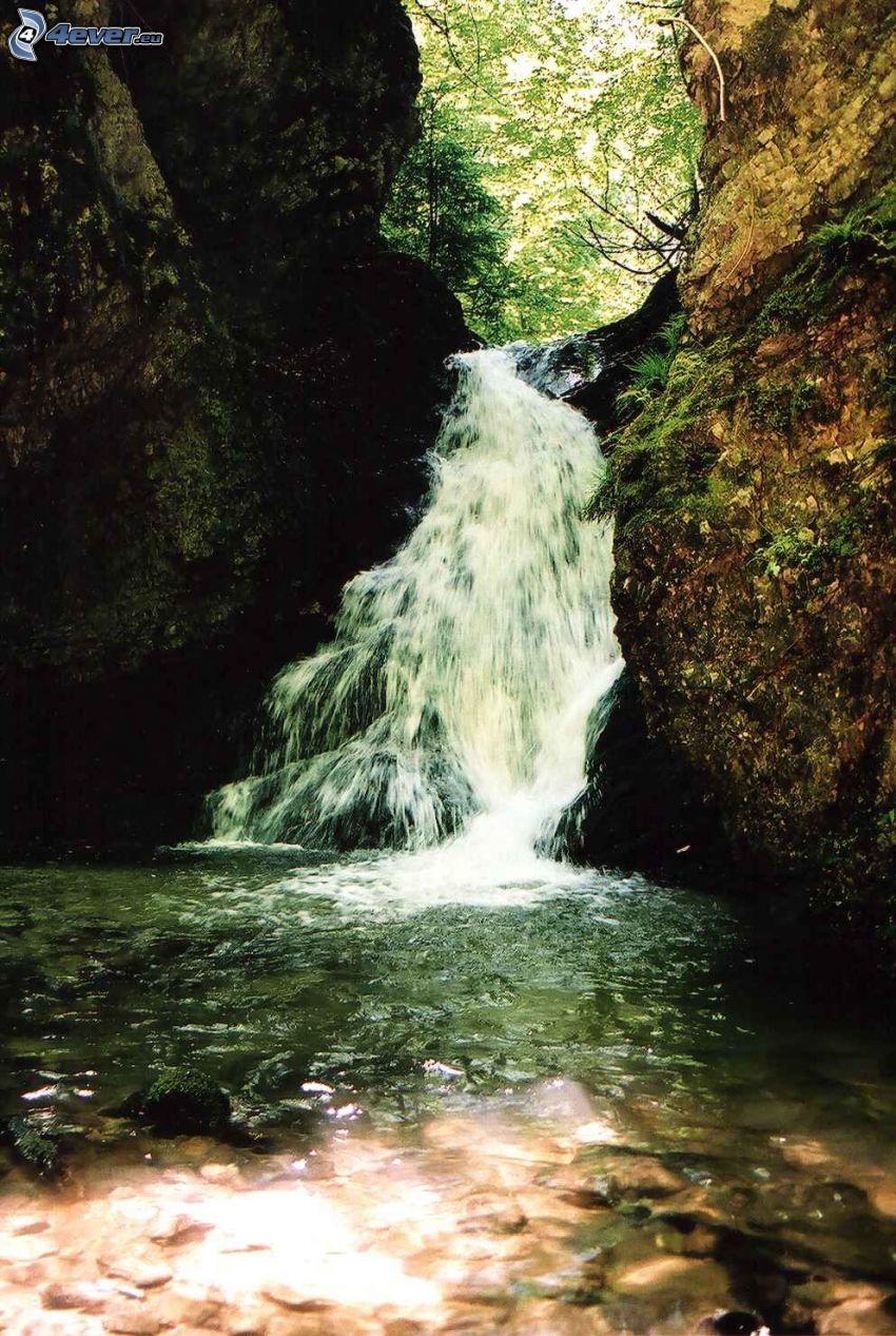 wodospad, Słowacja, jeziorko w lesie