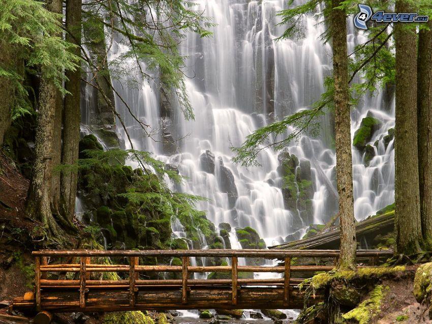 wodospady, drewniany most, drzewa