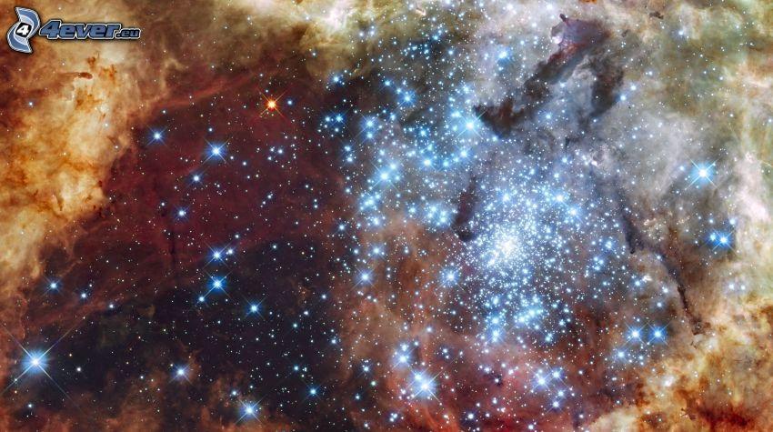 gwiazdy, mgławica
