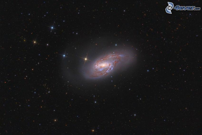 M66, galaktyka spiralna, gwiazdy