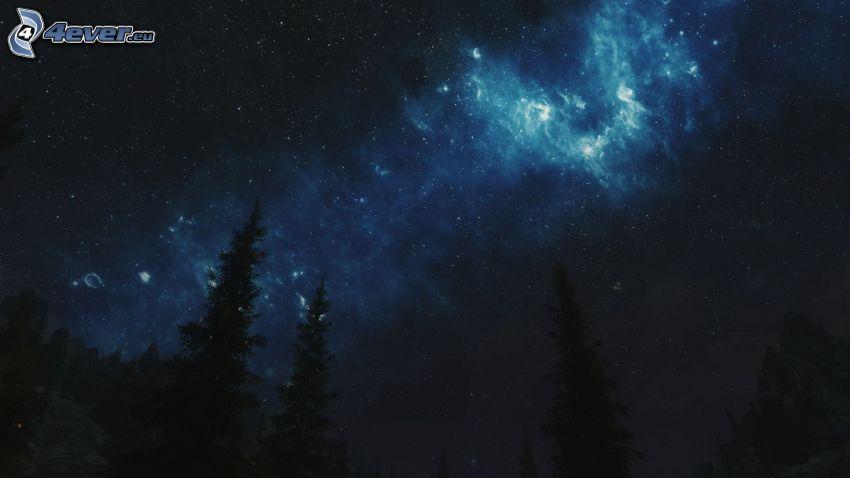 niebo w nocy, sylwetki drzew, gwiazdy