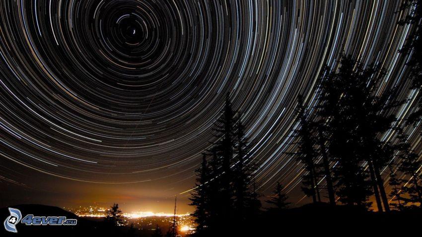 niebo w nocy, sylwetki drzew