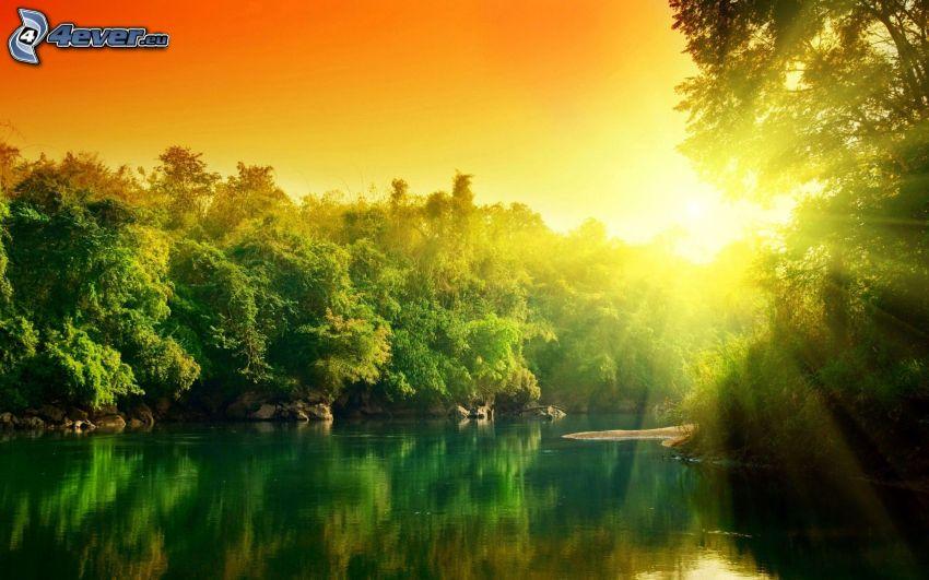 zachód słońca, rzeka, las, pomarańczowe niebo