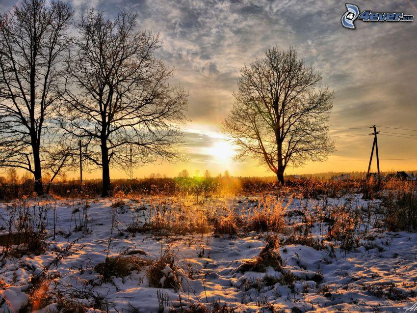 zachód słońca na łące, zaśnieżona łąka