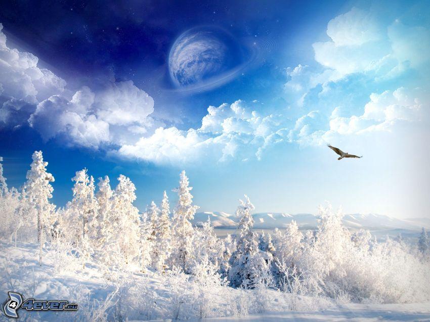 zimowy krajobraz, zaśnieżony las, zamarznięte drzewa, śnieg, ptak drapieżny, chmury, księżyc, sztuka cyfrowa