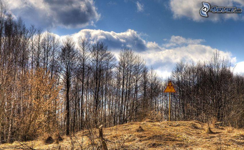 znak, radioaktywność, las, chmury, Czarnobyl