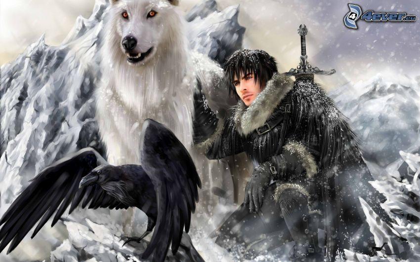 wojownik, wrona, śnieg, pies