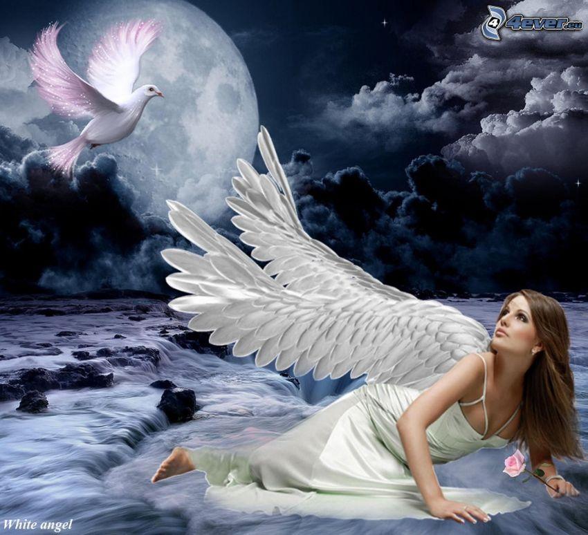 anioł, gołębica, księżyc, ciemne chmury, rzeka