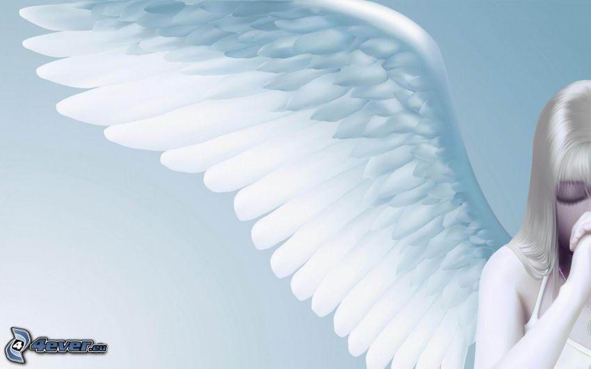 anioł, skrzydło, modlitwa