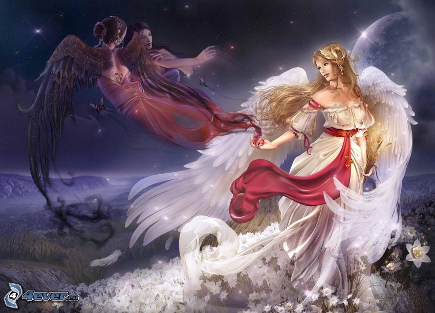 anioły, białe skrzydła, czarne skrzydła