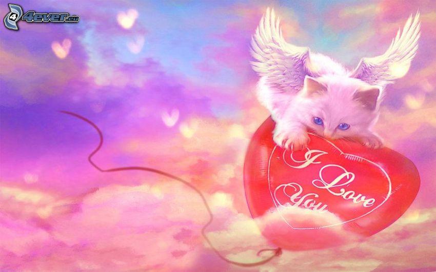 biały kot, białe skrzydła, lot, serduszko, I love you, chmury