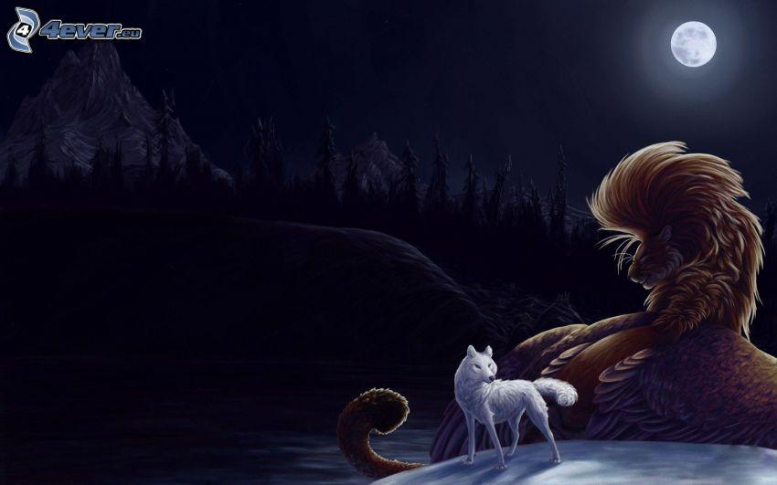biały wilk, księżyc, noc
