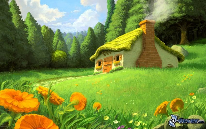 chatka, łąka, las