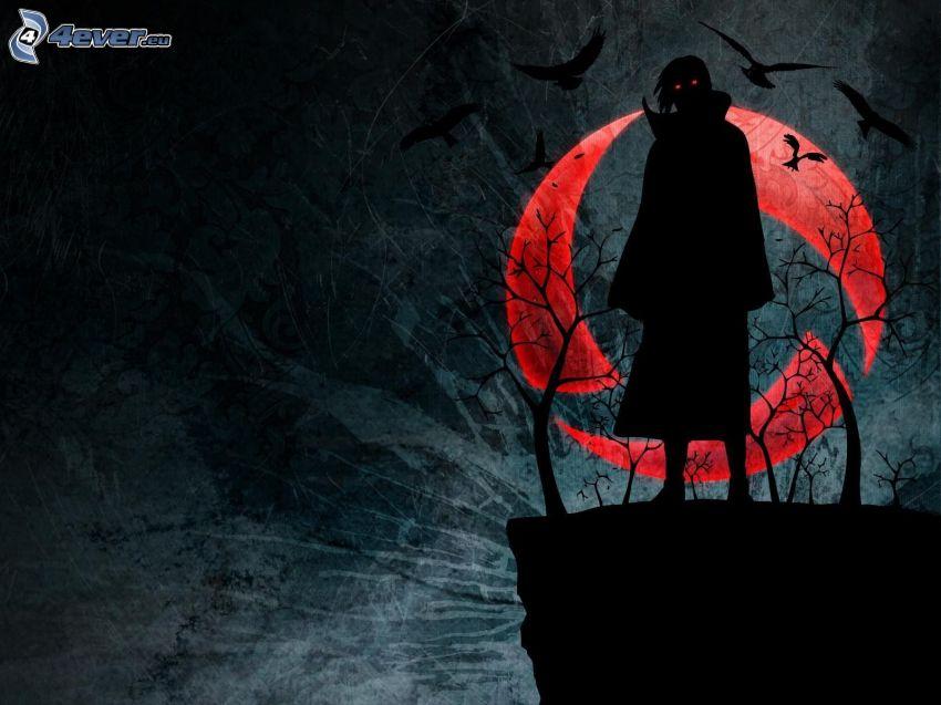 ciemnowłosa kobieta, sylwetka kobiety, księżyc, gawrony, noc