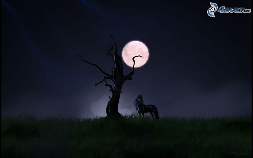 czarny koń, suche drzewo, księżyc, trawa, noc