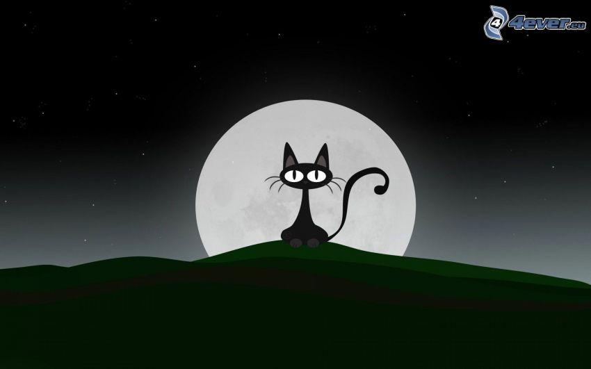 czarny kot, księżyc, noc, gwiazdy