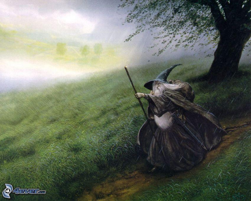 czarownik, łąka, drzewo