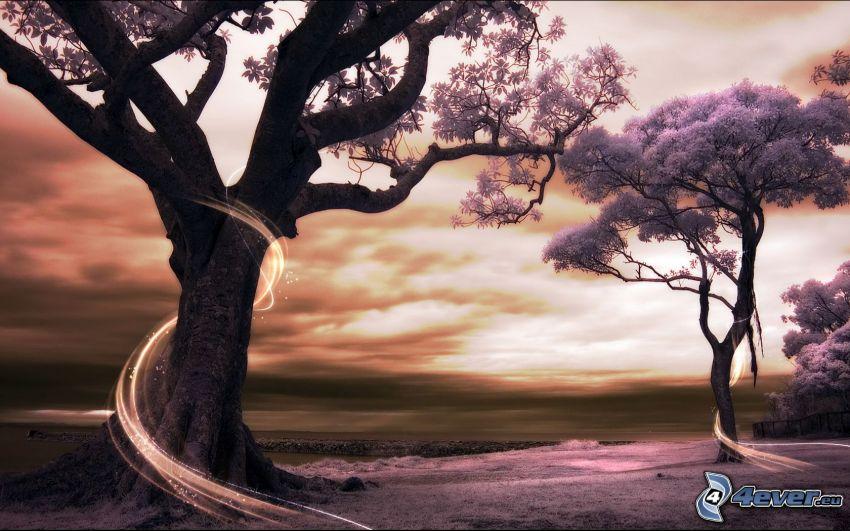 drzewa, linie, ciemne chmury