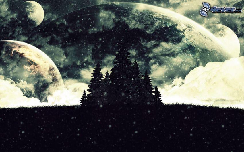 drzewa iglaste, opady śniegu, planety