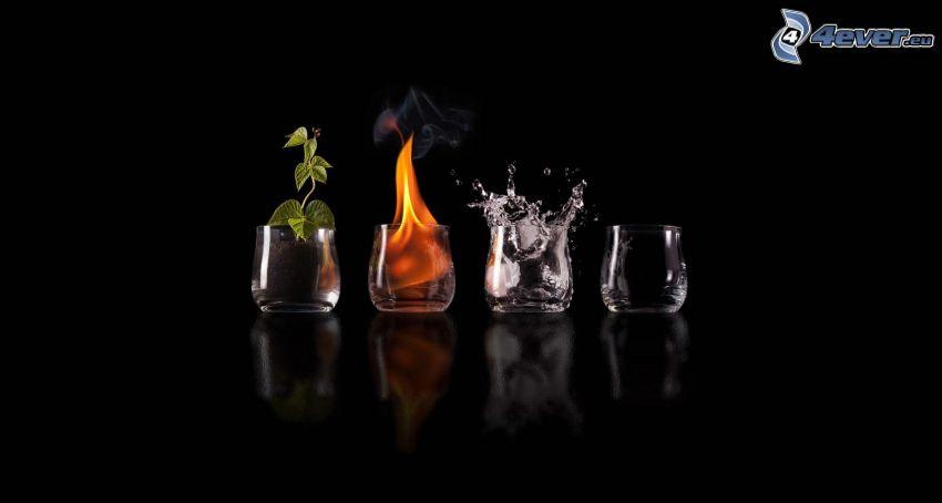 elementy, ziemia, ogień, woda, powietrze, kieliszki, roślina, plusk