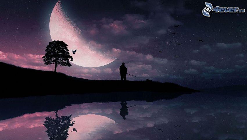 księżyc, samotne drzewo, sylwetka drzewa, sylwetka mężczyzny, jezioro, odbicie, noc, ptaki