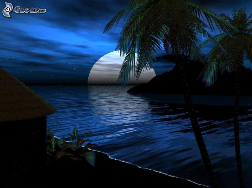 księżyc nad powierzchnią, plaża, palmy, chatka, noc