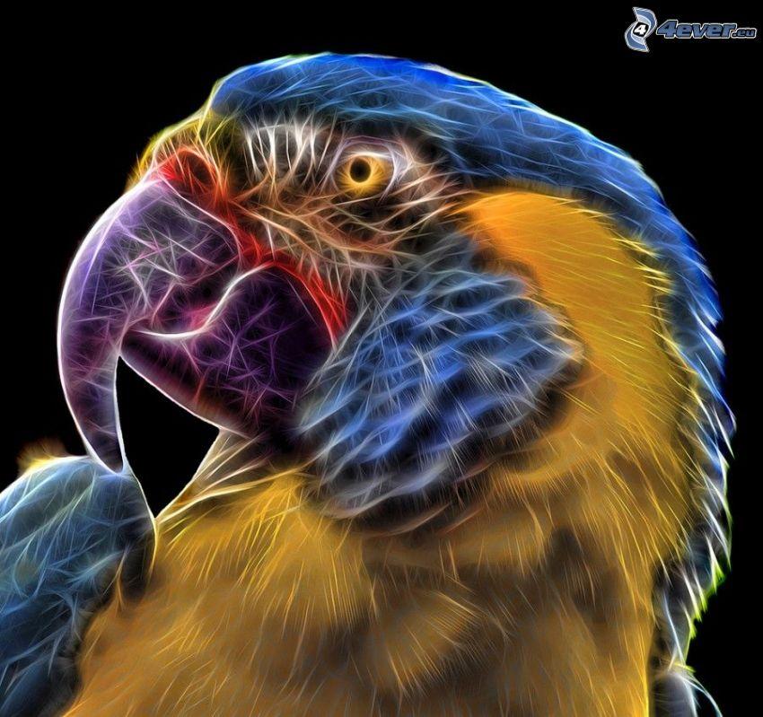 papuga, fraktalny ptak, zwierzęta fraktalne