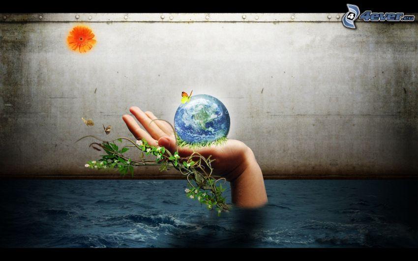 Planeta Ziemia, ręka, motyl, roślina, woda, gerbera, pomarańczowy kwiat